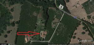Localizzazione sede corso a Corchiano (VT)