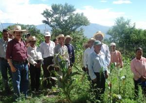 Contadini in Ecuador